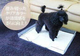 「クリアレット」シーツ固定タイプ(トイレシート「ワイド」サイズ用)(犬トイレトイレ用品トイレシートペットシーツ犬のトイレ犬用トイレ送料無料室内犬インテリア清潔かわいいシンプルスタイリッシュおしゃれオシャレくりあれっと)
