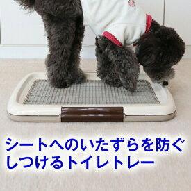 【犬用 トイレ】しつけるトイレトレー メッシュプラスS(48cm×35cm) いたずら防止 メッシュ付き トイレ シート の 交換 が 楽( 犬 イヌ ペット 用品 しつけ 躾 トレーニング イタズラ ペット シーツ パピー シニア 子犬 成犬 老犬 高齢 小型犬 トイプードル チワワ )