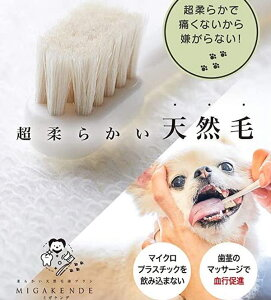 ミガケンデ 柔らかい天然毛歯ブラシ