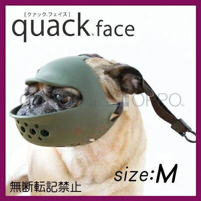 【正規品】quack face クアックフェイス Mサイズ 短吻種用