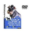 ミニチュア・シュナウザーのペット・カット・アレンジとスタンダード・スタイル『DVD』