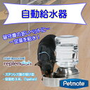 Petmate replendish ステンレス製給水器 ペットステンレスウォーター 約3.8L