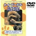 トイ・プードル ベア・カットのバリエーション『DVD』