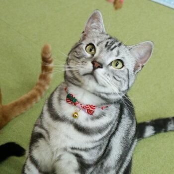 ネコ用首輪結(雅みやび)<鈴付き仕様>
