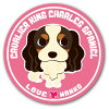 LOVE made me this illustration series 20 Cavalier King Charles Spaniel dog stickers 476 yen (excluding tax) (125 mm diameter)