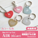 Am air aa2 06w