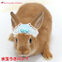うさぎ 帽子 うさパンT 水玉ウサギ 兎 パンツ 頭飾り SNS 写真映え