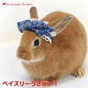 うさぎ 帽子 うさパンT ペイズリーウサギ 兎 パンツ SNS 写真映え