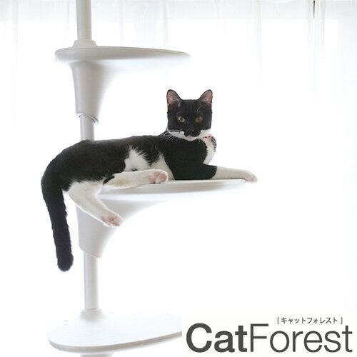 【OPPO (オッポ)】Cat Forest キャット フォレスト キャットタワー ホワイト 猫 ペット