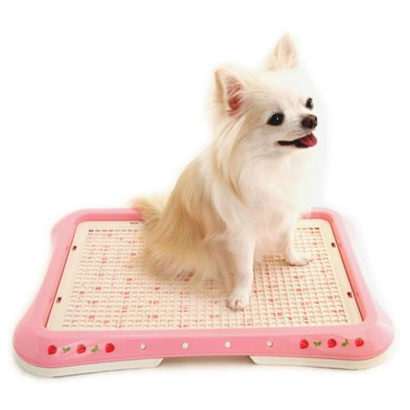 ペットパラダイス Pet'y Soin 野いちご柄ペットトレイ(室内トイレ)《ピンク》 レギュラーサイズ 
