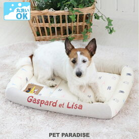 ペット ベッド 犬 ウォッシャブル 洗える リサとガスパール カドラーベッド (57×45cm)   【8月限定送料無料】 犬 猫 ペットベット ハウス 小型犬 介護夏クッション
