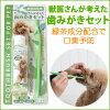 ペットパラダイス【犬・猫用】Pet'ySoin獣医さんが考えた歯みがきセット(デンタルケアアクア&歯ブラシ)