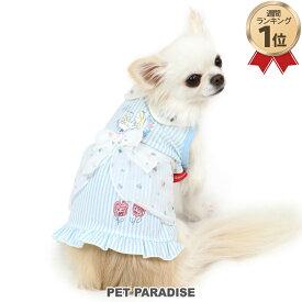 犬 服 春 ディズニー ふしぎの国のアリス ストライプ ワンピース 【小型犬】   ドッグウエア ドッグウェア イヌ おしゃれ かわいい メール便可