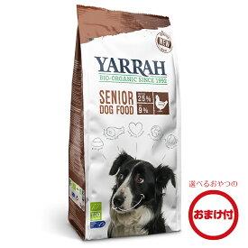 ■おまけつき■【正規品】YARRAH(ヤラー)オーガニックドッグフードシニア2kg