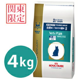 【あす楽対応】【関東限定】【代引不可】ロイヤルカナン ベッツプラン猫用 メールケア 4kg
