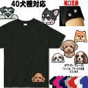 250円OFFクーポン セール 24日まで Tシャツ 犬 オリジナル シーズー トイプードル チワワ 柴犬 シュナウザー ダックス…
