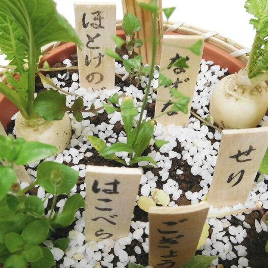 ご予約品■お正月寄せ植えかご■江戸川区特産春の七草寄せ植え籠入りセット5号鉢