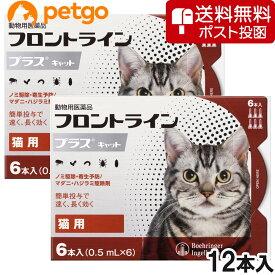 【200円OFFクーポン】【ネコポス専用】【2箱セット】猫用フロントラインプラスキャット 6本(6ピペット)(動物用医薬品)