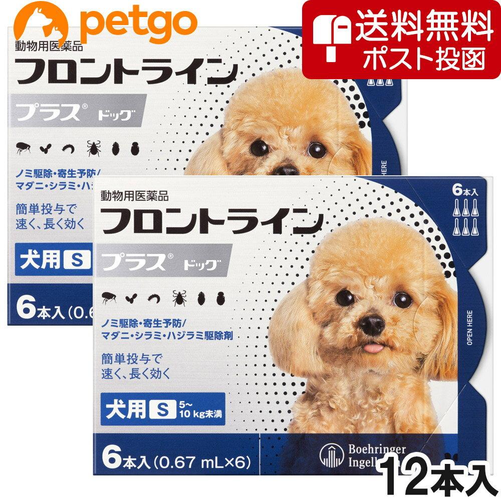 【ネコポス専用】【2箱セット】犬用フロントラインプラスドッグS 5〜10kg 6本(6ピペット)(動物用医薬品)