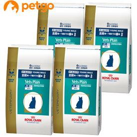 ロイヤルカナン ベッツプラン 猫用 メールケア 4kg×4袋【ケース販売】【あす楽】