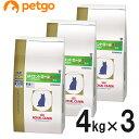 【3袋セット】ロイヤルカナン 食事療法食 phコントロール2 フィッシュテイスト ドライ 猫用 4kg【あす楽】