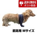 【最大350円OFFクーポン】【ネコポス専用】ワンツープロテクター 前脚用 M