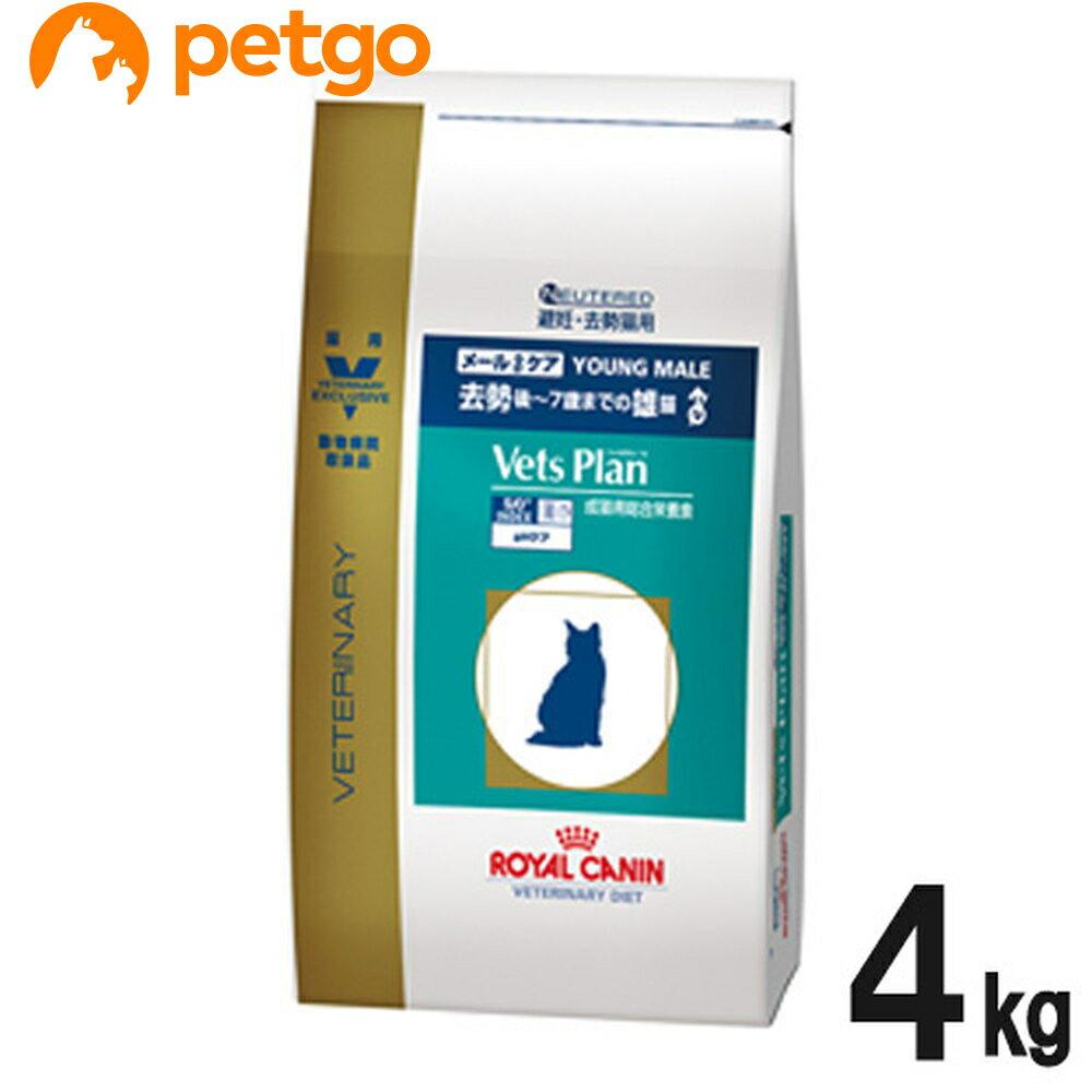 ロイヤルカナン ベッツプラン 猫用 メールケア 4kg【あす楽】