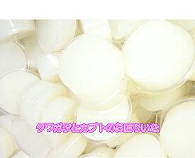 【KBファーム製】【クワガタムシ・カブトムシ用】プロゼリー 60g 50個入