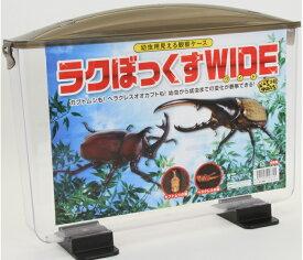 ラクぼっくすWIDE(幼虫用見える観察ケース)