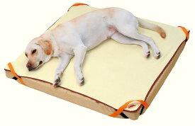 ペティオ zuttone ずっとね 老犬介護用 床ずれ予防ベッド 大型犬用ベッド ウレタンフォ−ム 犬 シニア期〜介護期 大型犬 短毛犬 長毛犬 〜35kg 寝たきりや横になっている事が多くなったときの快適な寝床に Petio