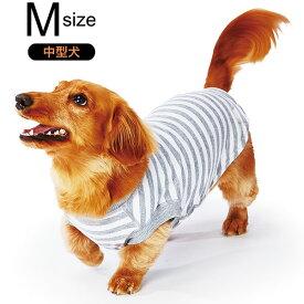 ペティオ E-Stretch スキンTシャツ ペールグレーボーダー M 中型犬 短毛 長毛 イヌ アパレル ウェア Petio