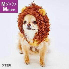 ペティオ 犬用ウェア 変身パーカー AWV ライオン ミニチュアダックス用 M 全年齢 超小型犬 小型犬 犬服 短毛 長毛 Petio