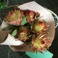 ココネシアのドライフラワー花束/スワッグに!DIY/カントリー/ナチュラル/キッチン玄関飾りに/ハンドメイド