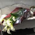 シンプルでゴージャス!カラーの花束