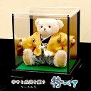 袴ベア -ケース入り- 五月人形 端午の節句 コンパクト おしゃれ ケース飾り こどもの日 子どもの日 ミニ 小さい 男の…