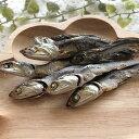 いわしまるごとジャーキー 魚 国産無添加 犬猫用ペットのおやつ 小動物 爬虫類 ピクシーズマーケット