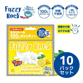 キシリトール 100% キャンディー タブレット FuzzyRock ファジーロック レモン味 10パックセット あめ アメ こども 虫歯 甘い 爽快感 歯磨き ノンシュガー 糖類オフ 歯 矯正 防災