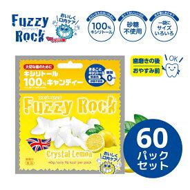 キシリトール 100% キャンディー タブレット FuzzyRock ファジーロック レモン味 60パックセット あめ アメ こども 虫歯 甘い 爽快感 歯磨き ノンシュガー 糖類オフ 歯 矯正 防災