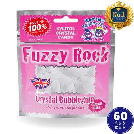 【キシリトール 100%】 キャンディー タブレット FuzzyRock ファジーロック バブルガム味 60パックセット あめ アメ こども 虫歯 甘い 爽快感 歯磨き ノンシュガー 糖類オフ 歯 矯正 防災