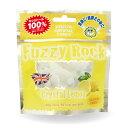 FuzzyRock ファジーロック レモン味 キシリトール 100% キャンディー タブレット あめ アメ こども 虫歯 甘い 爽快感 歯磨き ノンシュガー 糖類オフ 歯 矯正 防災