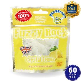【キシリトール 100%】 キャンディー タブレット FuzzyRock ファジーロック レモン味 60パックセット あめ アメ こども 虫歯 甘い 爽快感 歯磨き ノンシュガー 糖類オフ 歯 矯正 防災