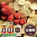 【安心のメーカー直販】フリーズドライフルーツ mirai fruits ミライフルーツ 未来果実 いちご りんご バナナ パイナップル 全種類セッ…