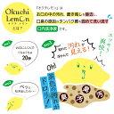 オクチレモン(口内洗浄液)【24セット】120本セット
