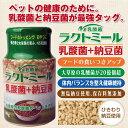 NS乳酸菌×ドライ納豆 ラクトミール80g 便利なワンタッチキャップ付。【当店オススメ】