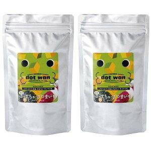 【無添加・国産・手作り】ドットわん野菜<フリーズドライ・犬用栄養補完食>(45g)×2個セット