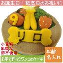 【送料無料 送料込】Lovina(ロビナ) フルーツバスケットケーキ【楽ギフ_名入れ】【犬用ケーキ 誕生日】
