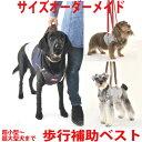 犬用介護ケア・歩行補助に アシストベスト(超小型犬〜超大型犬まで)サイズオーダーメイド可能だから負担も少ない …
