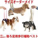 犬用介護ケア・歩行補助に アシストベスト 後ろ足用(超小型犬〜超大型犬まで)サイズオーダーメイド可能だから負担…