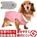 WHCY Tピース袖なしタイプ(1号〜2号) 避妊手術後・アレルギーのカイカイ・換毛期の犬猫の部屋着に ソフトな術後服 …