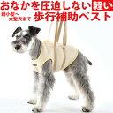 メッシュアシストベスト SS-M 小型犬 中型犬 用 犬用 介護 ケア 歩行補助 WHCY 高齢犬 シニア犬 老犬 介護服 足腰 の …